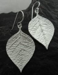 Brushed Sterling Silver Leaf Earrings